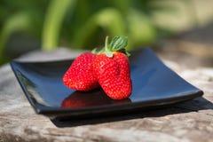 Erdbeeren auf einem Schwarzblech draußen Lizenzfreies Stockfoto