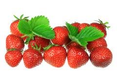 Erdbeeren auf Weiß. Stockfotografie