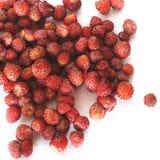 Erdbeeren auf weißem Hintergrund lizenzfreie stockfotos