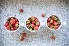 Erdbeeren in den Cup Stockfotografie