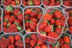 Erdbeeren in den Plastiktellersegmenten Lizenzfreie Stockfotografie
