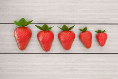 Erdbeeren, die auf weißer Tabelle in der Reihenbestellung liegen Linie der Erdbeere auf dem weißen Holztisch, Illustration 3d Lizenzfreies Stockbild