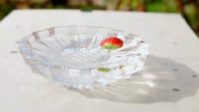 Erdbeeren, die in das Wasser verursacht Blasen ganz um es fallen stock video footage