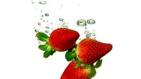Erdbeeren, die in Wasser auf weißem Hintergrund fallen stock video
