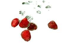 Erdbeeren, die in Wasser auf weißem Hintergrund fallen stock video footage