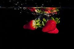 Erdbeeren, die in Wasser spritzen Stockfotografie