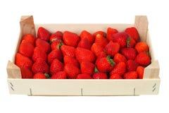 Erdbeeren in einem Kasten Stockfotografie