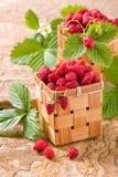 Erdbeeren in einem Korb Stockbilder