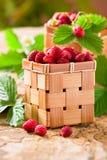 Erdbeeren in einem Korb Lizenzfreie Stockfotografie