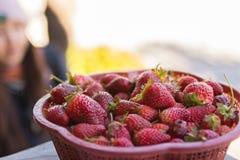 Erdbeeren in einem Korb Lizenzfreie Stockbilder