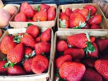 Erdbeeren an einem Markt Lizenzfreie Stockbilder