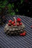 Erdbeeren in einem Weidenkorb lizenzfreie stockbilder