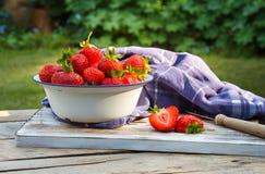 Erdbeeren in einer Schüssel. Lizenzfreies Stockbild