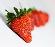 Erdbeeren in einer Zeile Lizenzfreies Stockbild