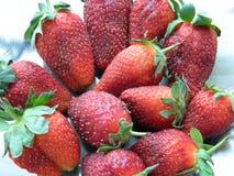 Erdbeeren gesammelt für die Freundin stockbilder
