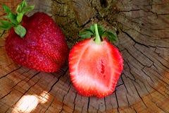 Erdbeeren im Garten Stockbilder