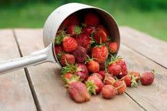 Erdbeeren liefen eine Schaufel über Stockfoto