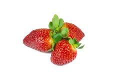 Erdbeeren lokalisiert auf dem weißen Hintergrund Lizenzfreies Stockbild