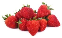 Erdbeeren lokalisiert auf weißem Hintergrund stockfotografie
