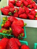 Erdbeeren am Markt lizenzfreie stockfotos