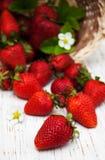 Erdbeeren mit Blättern Lizenzfreies Stockbild
