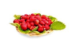 Erdbeeren mit Blättern auf Abtropfbrett Lizenzfreies Stockfoto
