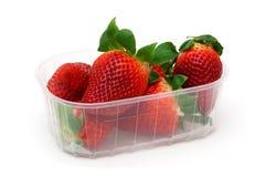 Erdbeeren mit Blättern im Behälter Stockfotografie