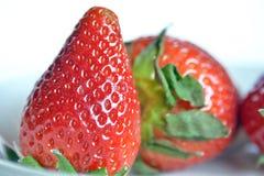 Erdbeeren, Stillleben Stockbilder