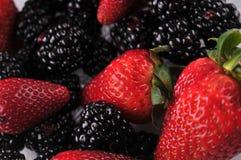 Erdbeeren u. Brombeeren Lizenzfreie Stockfotos