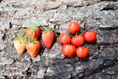 Erdbeeren und Kirschen Stockfoto