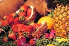 Erdbeeren und mehr Lizenzfreies Stockfoto