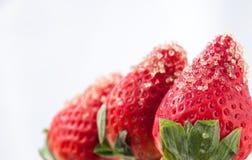 Erdbeeren und Rohzucker Stockfotos