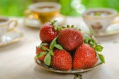 Erdbeeren zum Nachtisch lizenzfreies stockbild