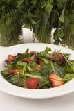 Erdbeeresalatnahaufnahme Stockfotos
