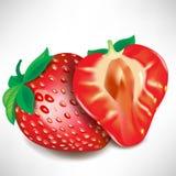 Erdbeerestück und volle Frucht Lizenzfreies Stockfoto
