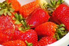 Erdbeerfreude stockbild