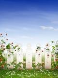 Erdbeergarten lizenzfreie stockfotos