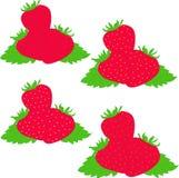 Erdbeerillustration Stockfotografie