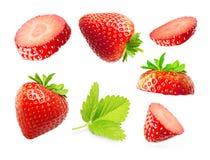 Erdbeermakro Stockbild