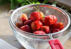 Erdbeermarmelade, die Abfluss nach der Wäsche kocht Lizenzfreies Stockfoto