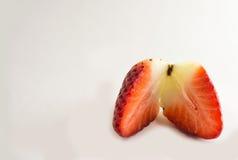 Erdbeerscheiben Lizenzfreie Stockfotos