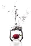 Erdbeersehr großes Spritzen Lizenzfreies Stockfoto