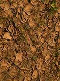 Erde Stockbild