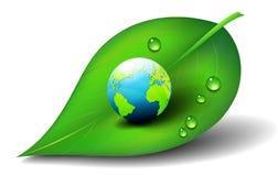 Erde auf Blatt-Ikonen-Symbol Stockbild