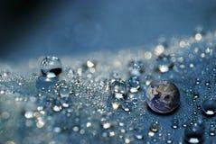 Erde in den Wassertropfen Lizenzfreies Stockfoto