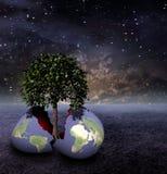Erde-Ei in der unfruchtbaren Welt verursacht das Leben Stockbilder