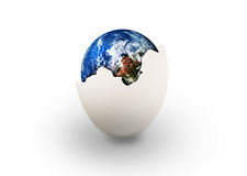 Erde im Ei Stockbild