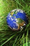Erde im Grün Stockfotografie