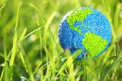 Erde im Gras Stockfotos