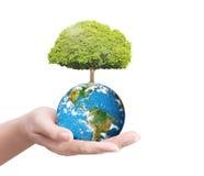Erde im Menschen die Hand Stockfoto